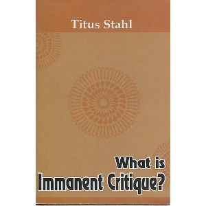 What is Immanent Critique?